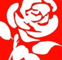 Lbour-rose_2